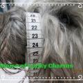 Tibet Terrier Maulkorb Anpassung in Zentimetern für BUMAS in Facebook zu sehen, House of Lucky Charms